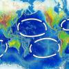 Oceanic_gyres